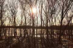 """Красота природы. Автор: Дарья Рябчикова, <br/> МБОУ """"Гимназия № 1"""". г. Биробиджана"""
